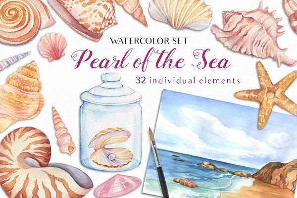 Download Watercolor Seashells