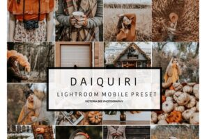 Download Mobile Lightroom Preset DAIQUIRI