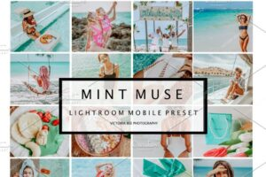 Download 5 Mobile Presets MINT MUSE