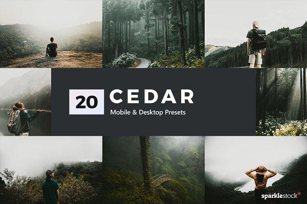 Download Cedar Lightroom Presets & LUTs