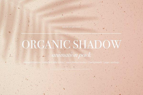 Download Animated Organic Palm Leaf Shadow