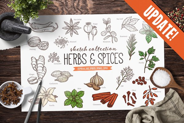 Download UPDATE! Herbs And Spices Sketches