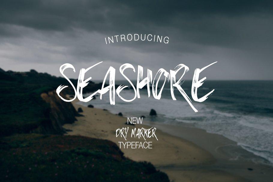 Download Seashore
