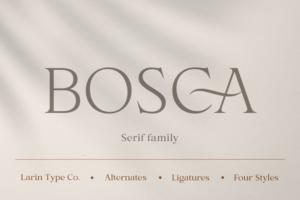 Download Bosca