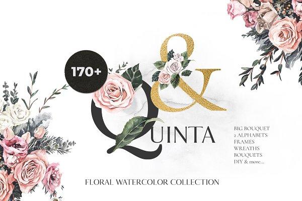 Download -50% QUINTA rose floral watercolor