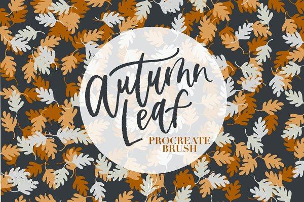 Download Fall Leaf Procreate Brush