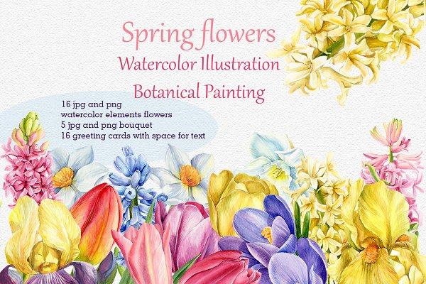 Download Spring flowers watercolor