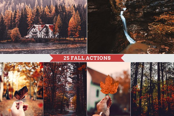 Download Fall - Autmun Photoshop Actions