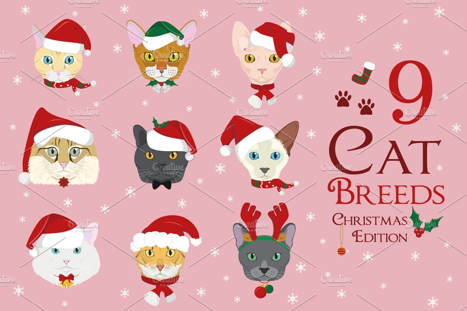 Download Christmas 9x Cat Breeds