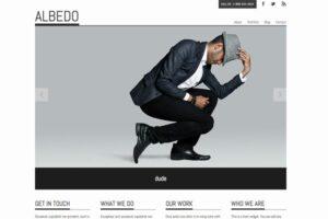 Download Albedo
