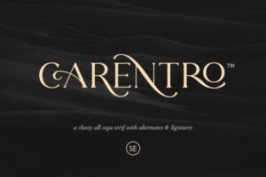 Download Carentro - Classy Serif