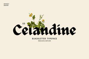 Download ED Celandine Typeface