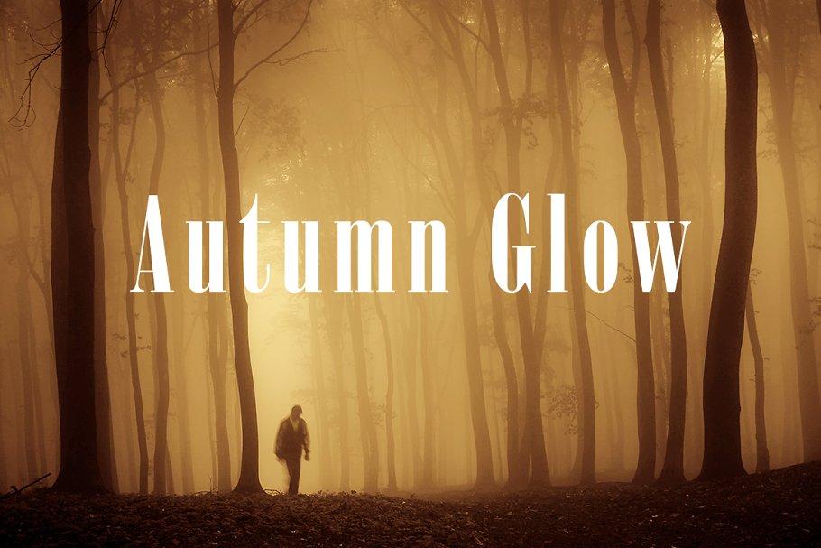 Download Autumn Glow Lightroom Presets
