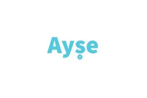 Download Ayse - Clean Tumblr Theme