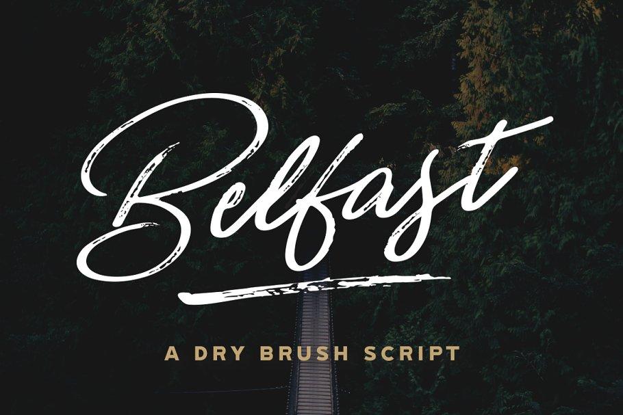 Download [FLASH SALE] Belfast Script