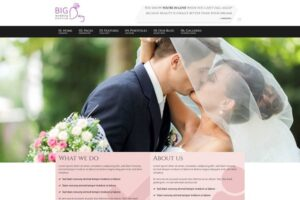Download Bigday - Wedding Planner WP Theme
