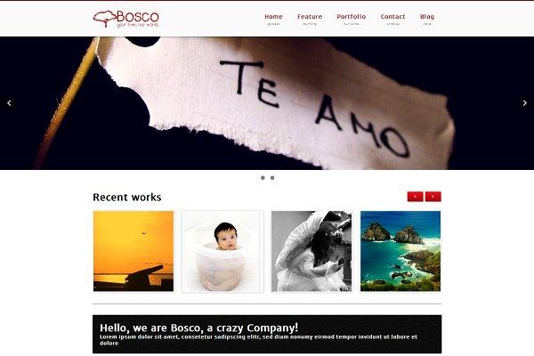 Download Bosco - multipurpose Portfolio/Blog