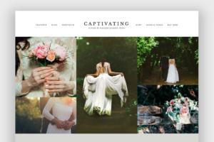 Download Captivating Wordpress Theme