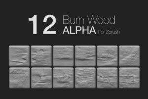 Download Zbrush - 12 BurnWood Alpha