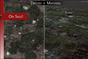 Download SALE! - Zbrush+Textures - Grass