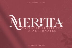 Download Meritta Serif 50% OFF