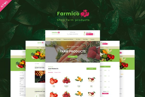 Download Fruit & Berry – Farm Products HTML