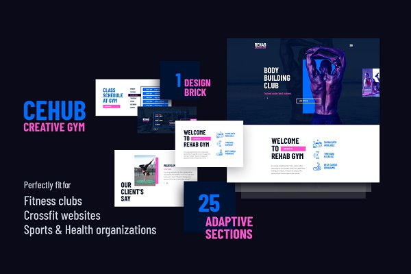 Download Cehub Creative Fitness Hub Center WP