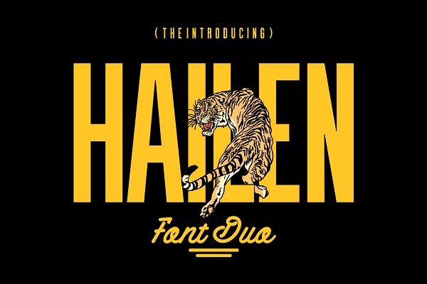 Download Hailen   Font Duo