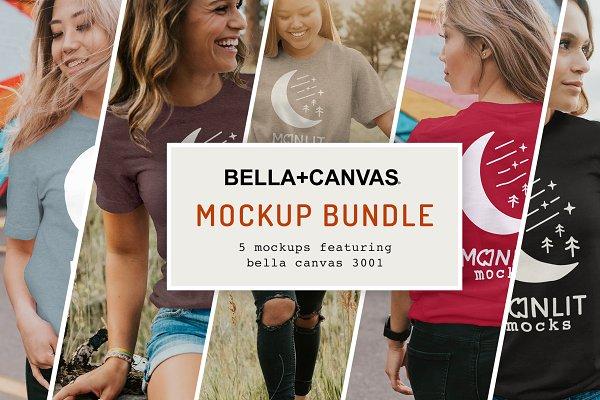 Download The Women's Bella Canvas 3001 Bundle