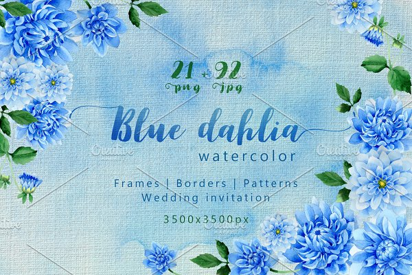 Download Blue dahlia great flowers PNG set