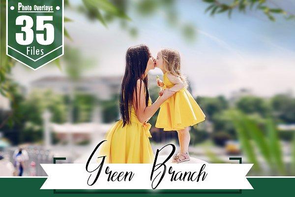 Download 35 green branch photoshop overlays