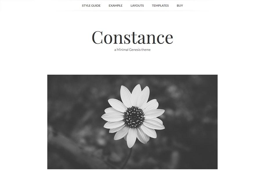 Download Constance - Minimal Genesis Theme