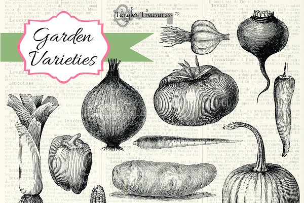 Download Vintage Vegetables Brushes