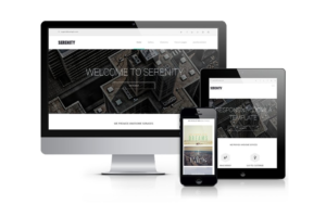 Download Serenity-Business & Portfolio Drupal