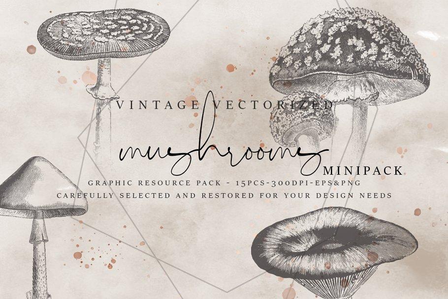 Download VintageVectorized-Mushroom Clipart