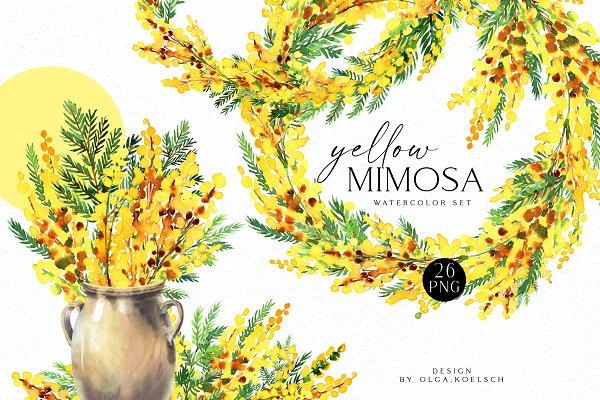 Download Yellow Mimosa Sunshine