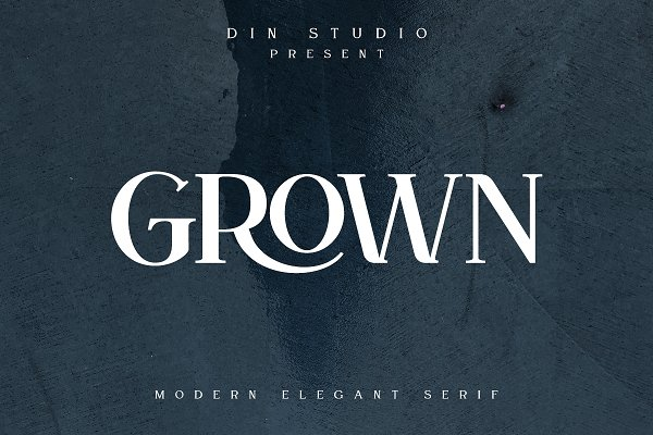 Download GROWN-Modern Display Font
