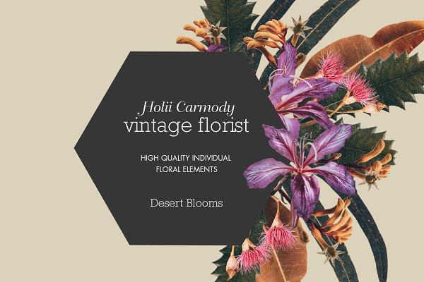 Download Native Australian Digital Flowers