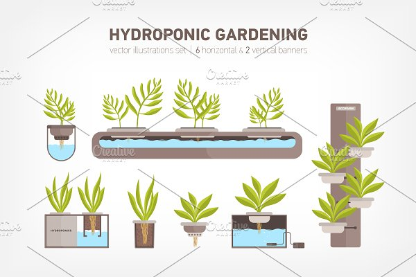 Download Hydroponic system