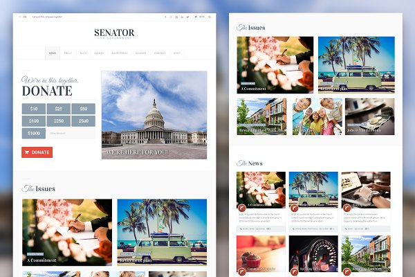 Download Senator: Political Theme