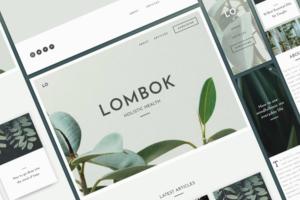 Download UI Kit - Lombok