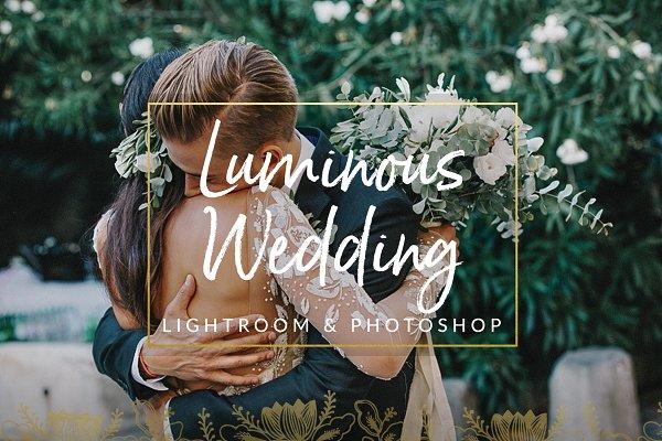 Download Luminous Film Tones Wedding Presets