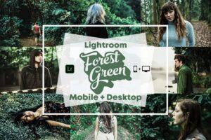 Download Forest Green - Lightroom Presets