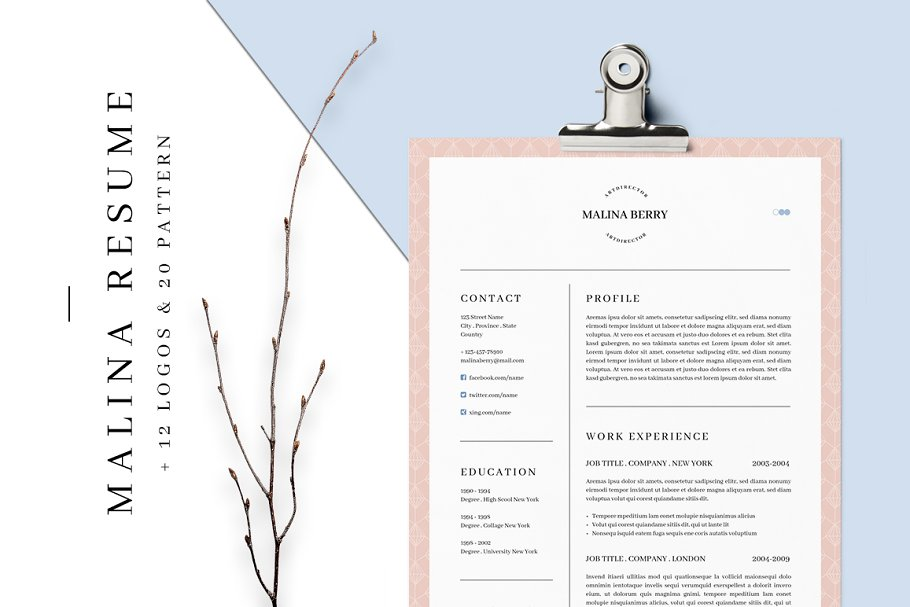 Download MALINA Resume – 3 Pages + Bonus