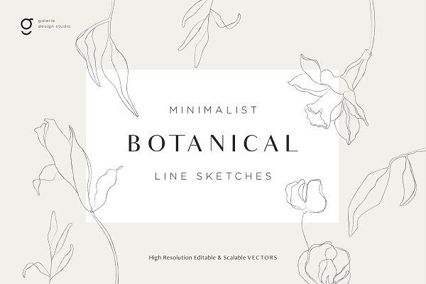 Download Minimalist Botanical Line Sketches