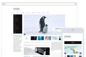 Download Oxygen / Minimal Blog Magazine Theme