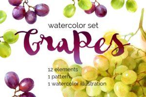 Download Watercolor grapes