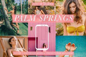 Download Palm Springs Mobile Blogger Presets