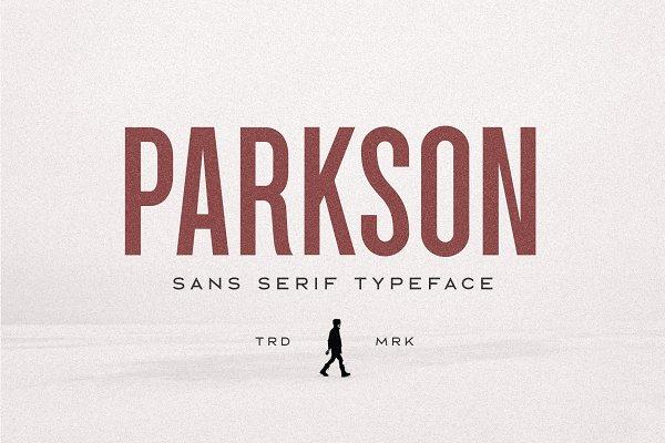 Download Parkson Sans Serif - 18 Fonts
