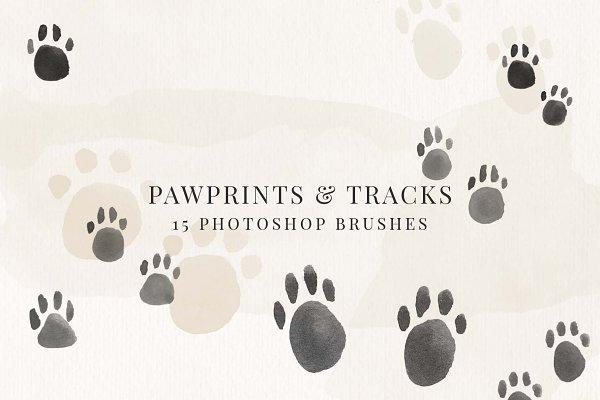 Download Paw Prints & Tracks Brush Pack